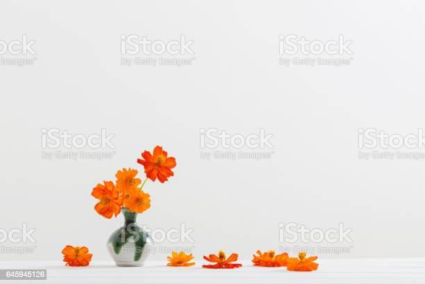 Still life with flowers kosmeya picture id645945126?b=1&k=6&m=645945126&s=612x612&h=q7silk6hgzw4pcikvg1iunwjtt7dh1qtadopx44jjha=