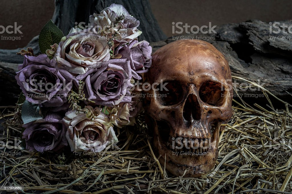 still life with human skull art abstract background stock photo