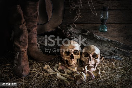 1176385551istockphoto still life with human skull in barn background 523391752