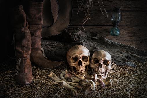 istock still life with human skull in barn background 523391752