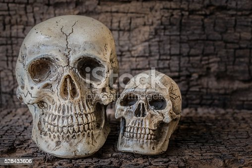 1176385551istockphoto Still life with human skull on wooden table 528433606