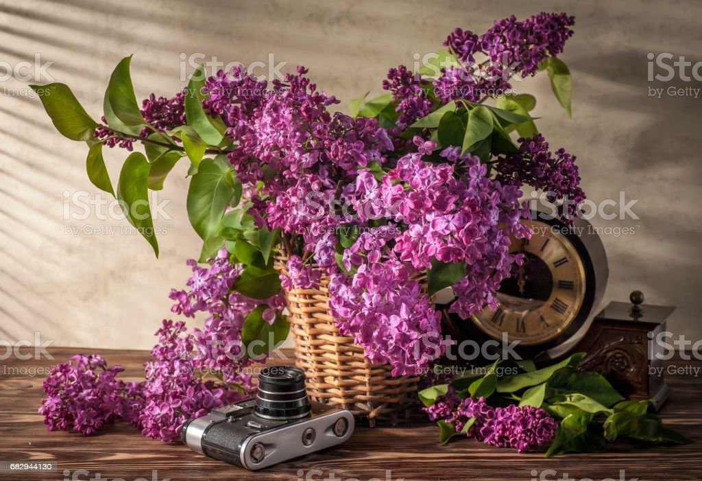 Still life with lilac royalty-free stock photo