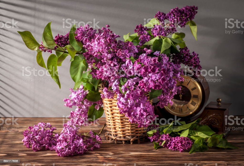 Still life with lilac foto stock royalty-free