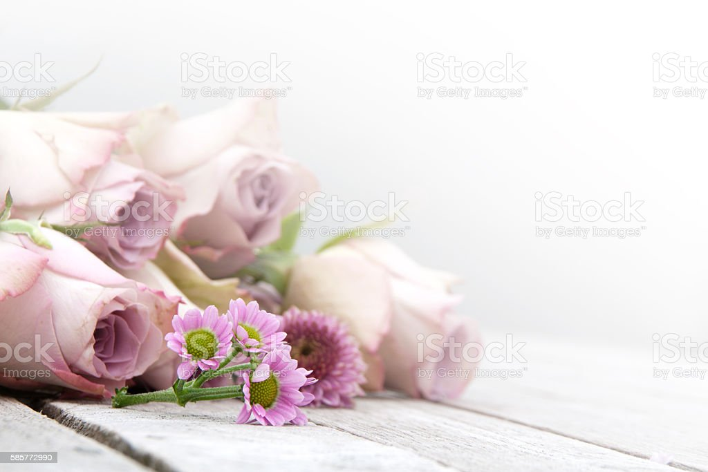 Ainda vida com rosas e margaridas em tons pastéis - foto de acervo