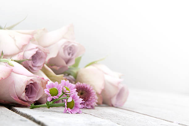 still life with pastel roses and daisies - nostalji stok fotoğraflar ve resimler