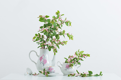 still life with pink spring flowers