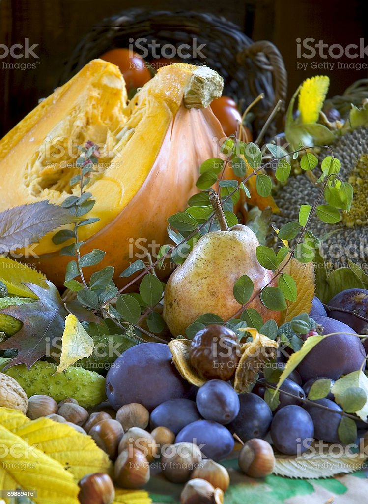still life with pumpkin royalty-free stock photo