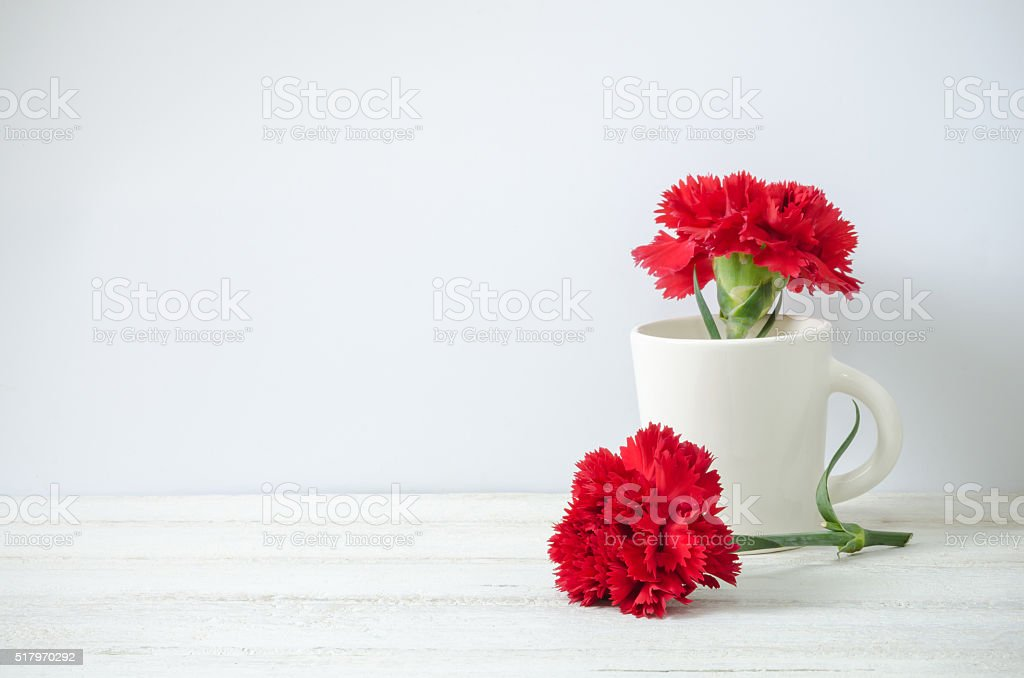 Still life with red Carnation flower stock photo