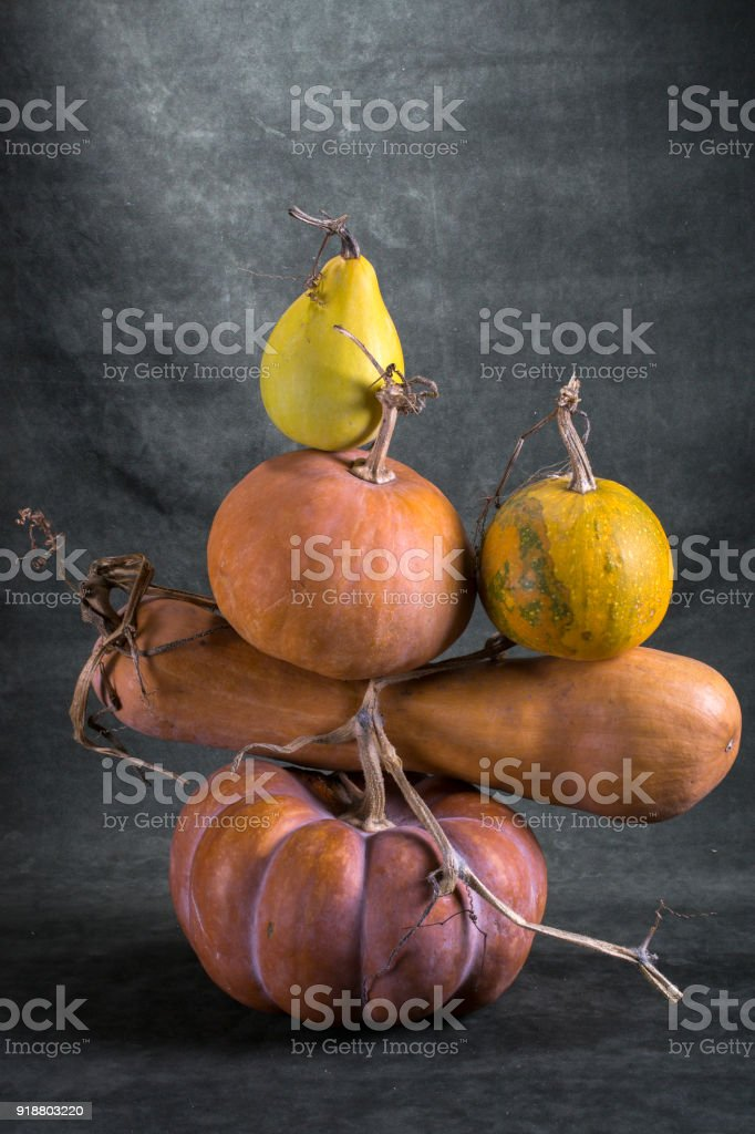 Still life with ripe pumpkins on a green background stock photo