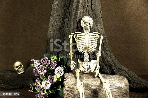 1176385551 istock photo Still life with skull, love story set, dark concept 498949126