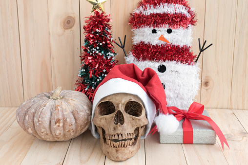 Still life with skull on wood background