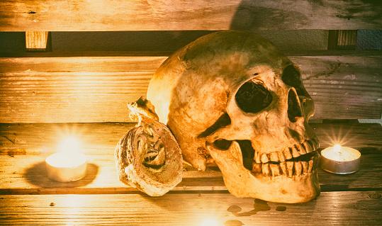 Still life with skull,  pumpkin