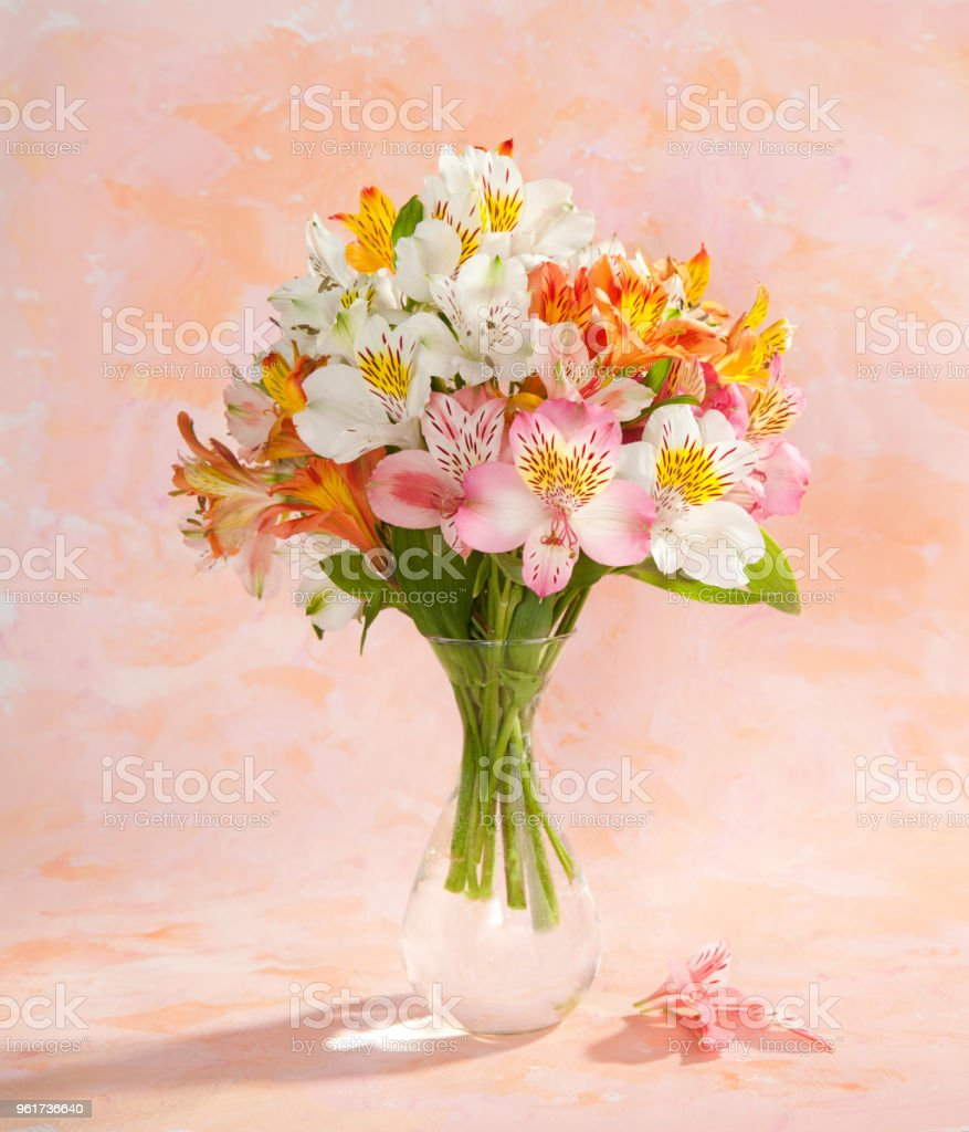 Still life with the bouquet of colorful Alstroemeria flowers  in a transparent glass vase on abstract background. stock photo