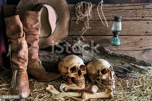 istock still life with two human skull in barn background 528434852