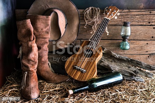 istock Still life with ukulele in barn studio 531194672