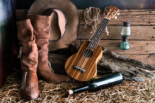 istock Still life with ukulele in barn studio 531194672