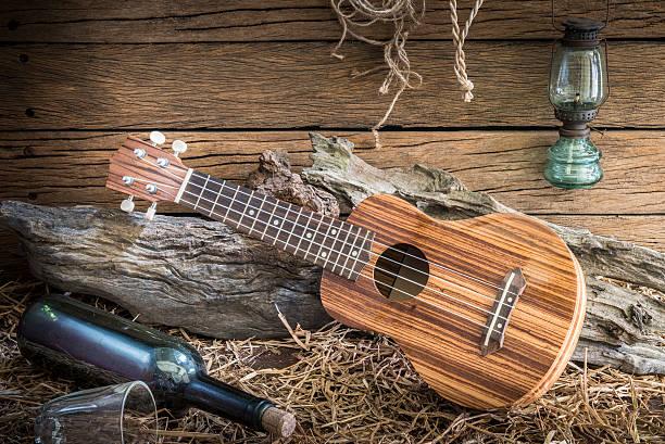 stillleben mit ukulele auf scheune studio-hintergrund - mini weinflaschen stock-fotos und bilder