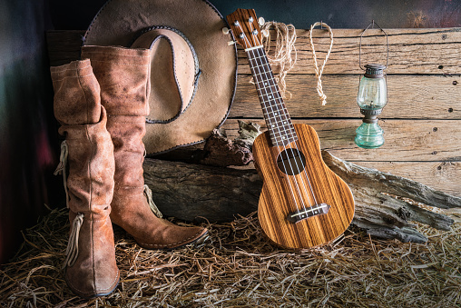 istock Still life with ukulele on cowboy hat and leather boot 528434678