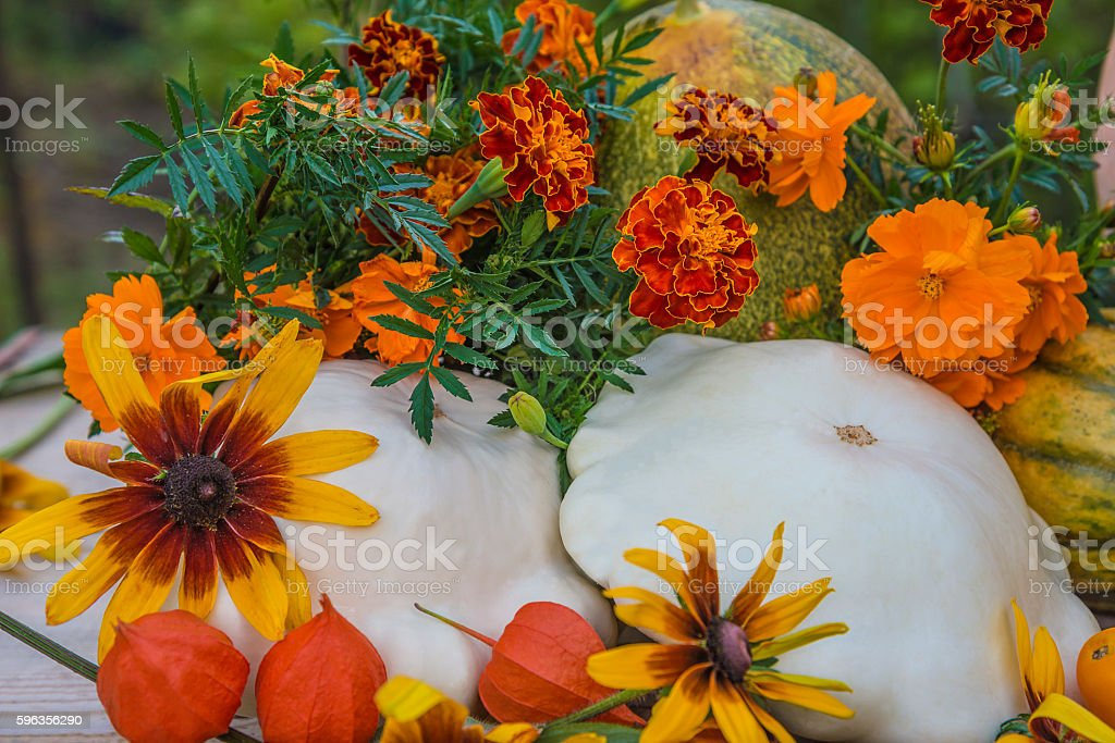 Still life. Yellow, orange, white vegetables and flowers royalty-free stock photo