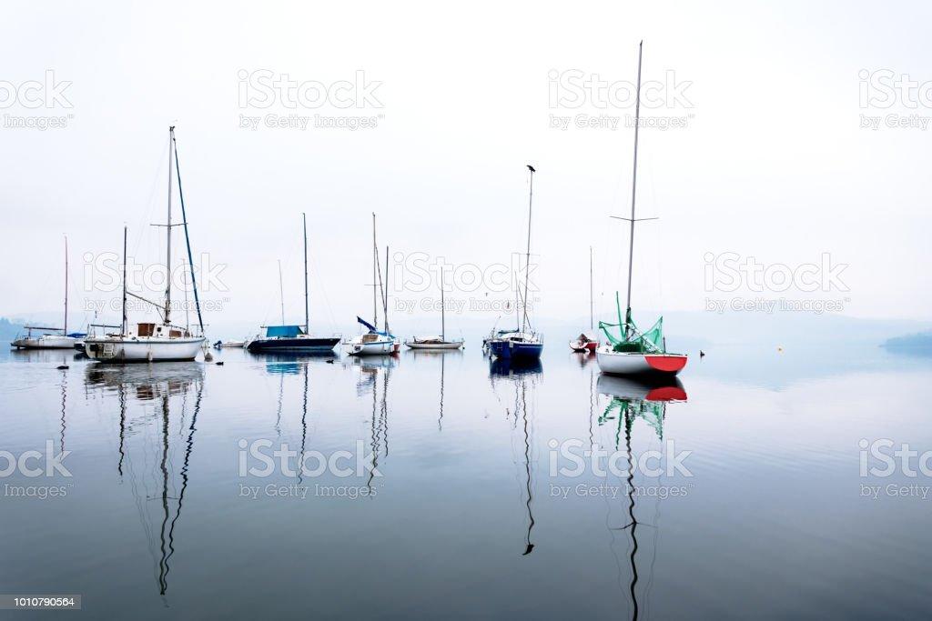 Still reflation in misty lake stock photo