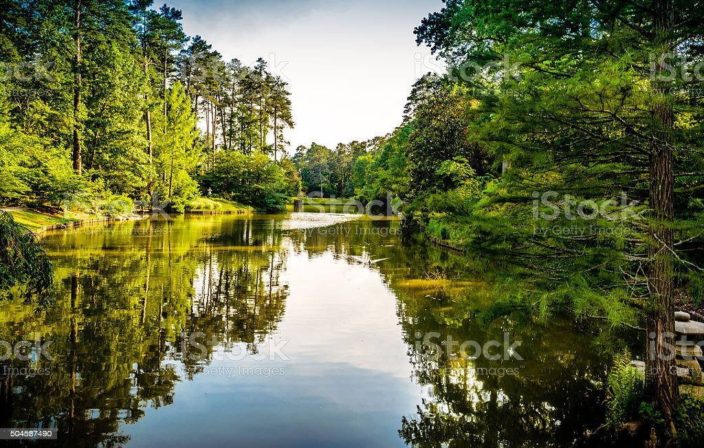 Still waters of a lake stock photo