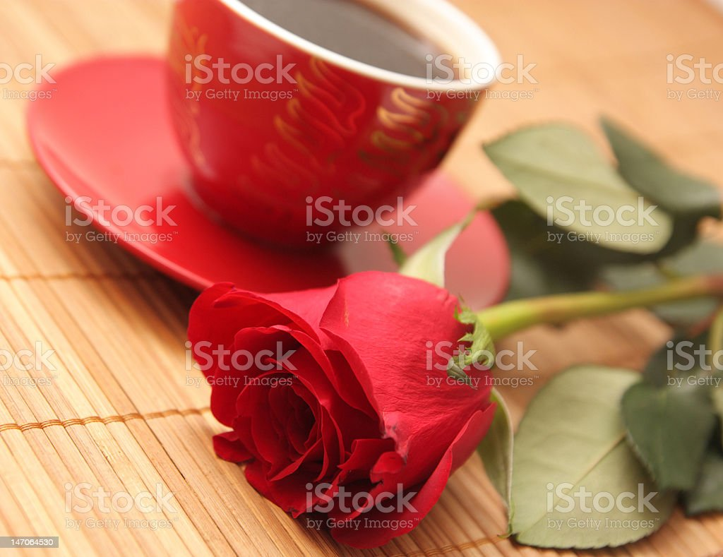 Still-life with a rose royalty-free stock photo