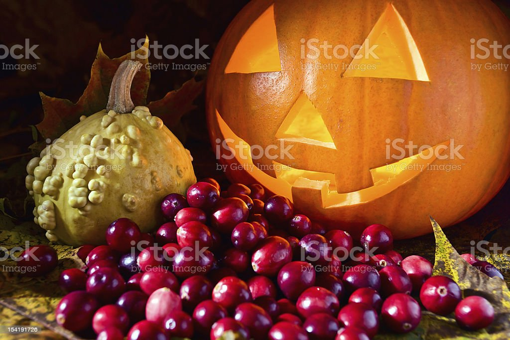 Still-life with pumpkins and cranberry royalty-free stock photo
