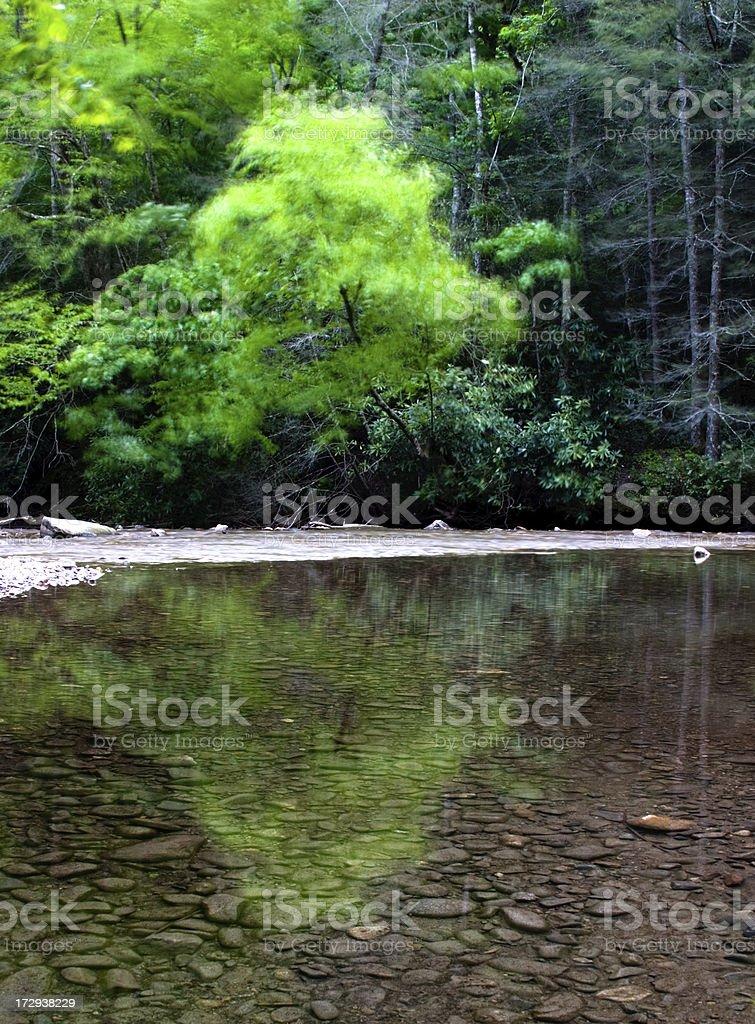 Stillness and Motion royalty-free stock photo