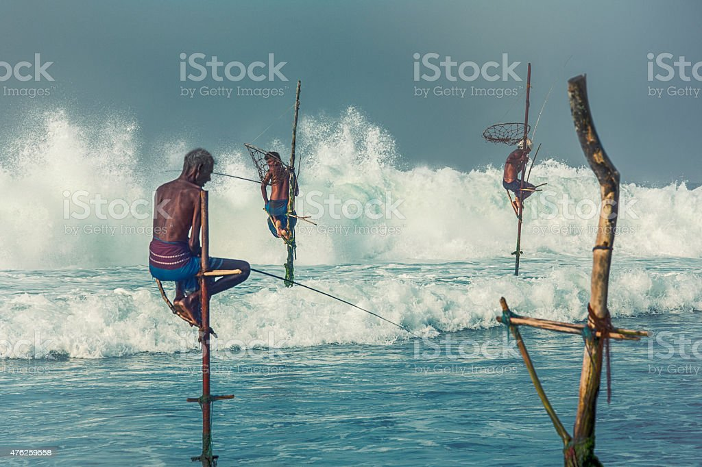 Stilt fishermen of Sri Lanka Stilt fishermen of Sri Lanka, 2015 Stock Photo