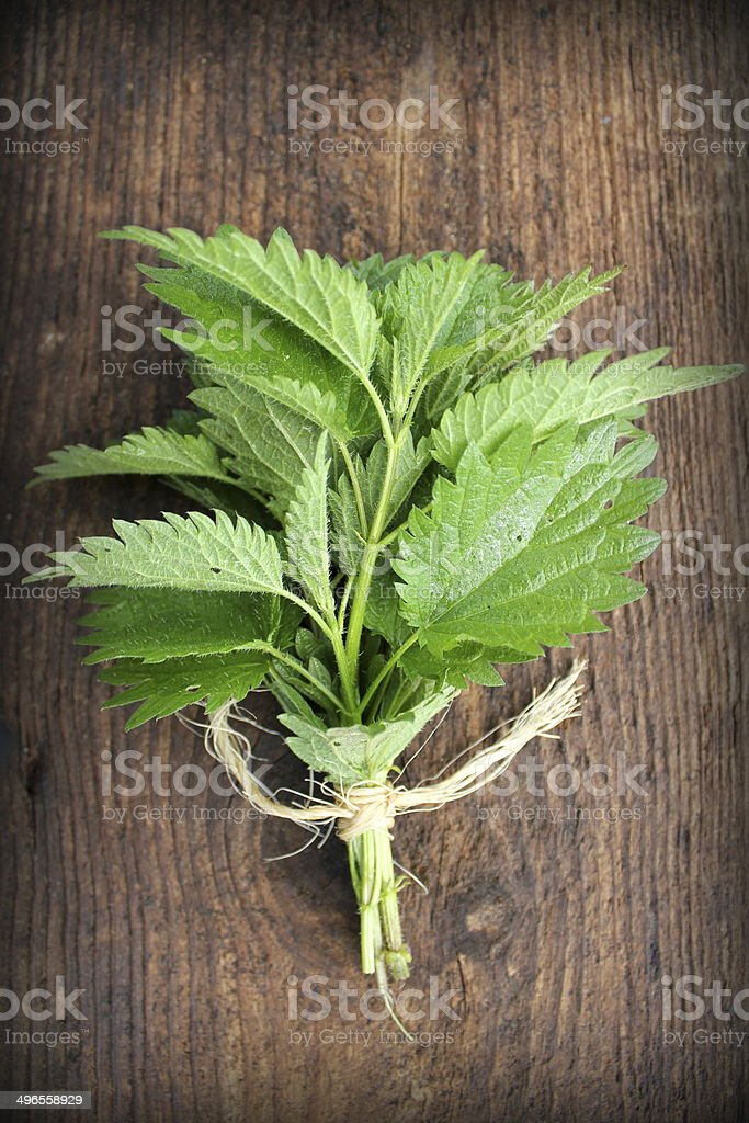 stinging nettle on a wooden background stock photo