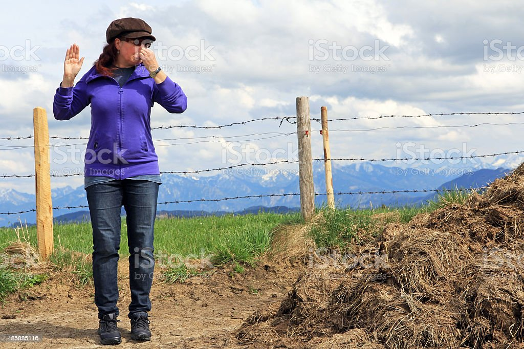 stinking dunghill stock photo
