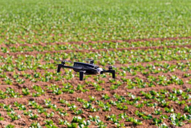 St.Louis Missouri. -24 de agosto: Foto editorial de un dron profesional Parrot Anafi en vuelo con una cámara digital 4k montada el 24 de agosto de 2015 en St.Louis Missouri sobre el campo soybeano - foto de stock
