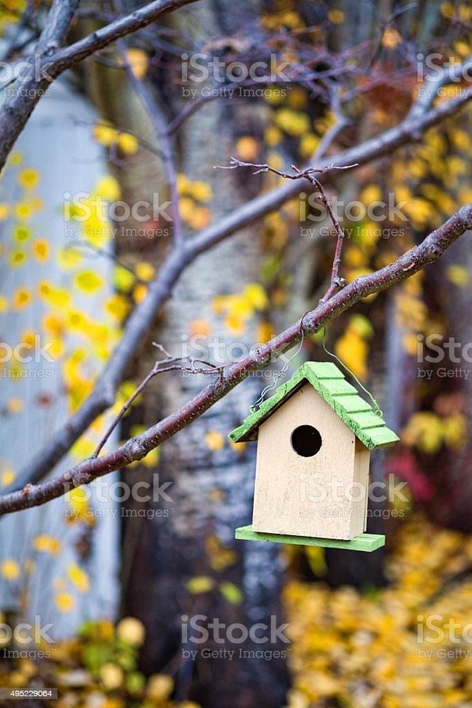 Stock Photo of Birdhouse With Colourful Autumn Leaves stock photo