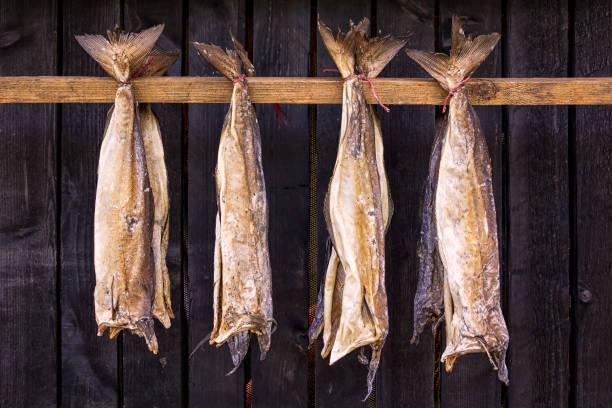 stokvis is ongezouten vis, met name kabeljauw, gedroogde door koude lucht - faeröer stockfoto's en -beelden
