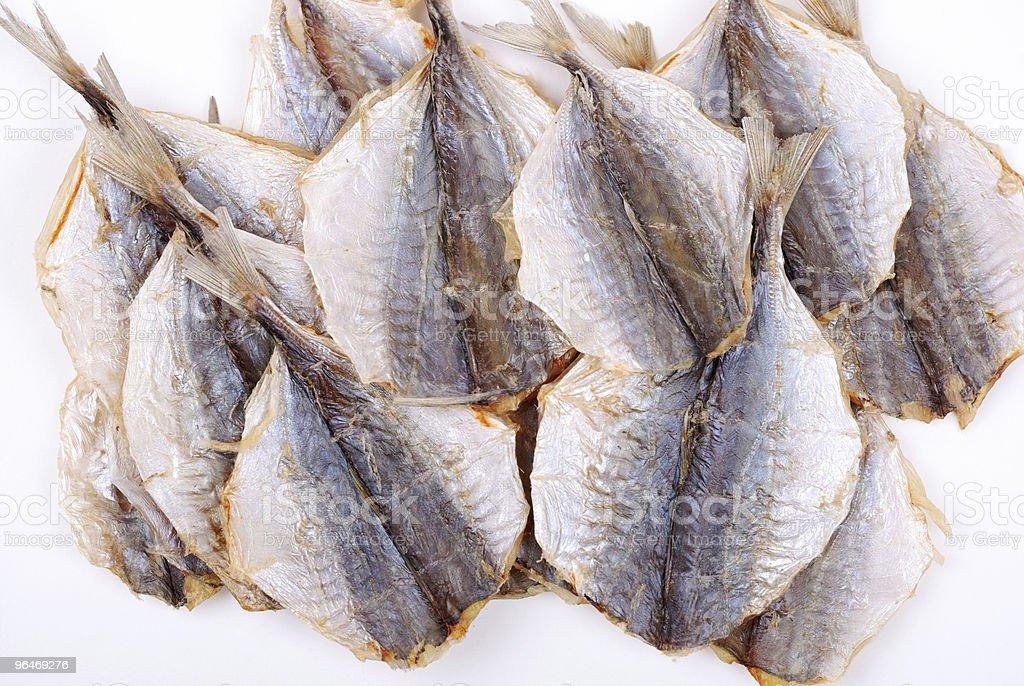 Stockfish isolated on white background royalty-free stock photo