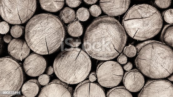 Raw forest tree trunks after logging as a background. Abstract artistic texture of a wall from stacked firewood in retro style. Idea of forestry, lumbering and sawmill