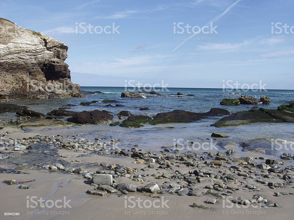 stone, algae and sand royalty-free stock photo