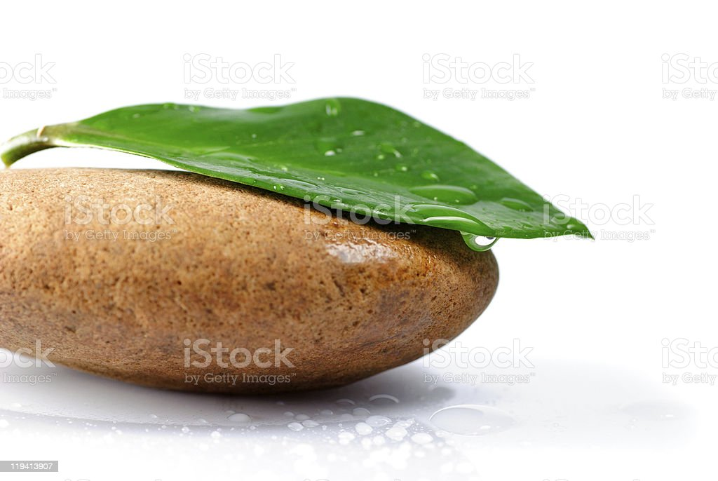 Stone and leaf royalty-free stock photo