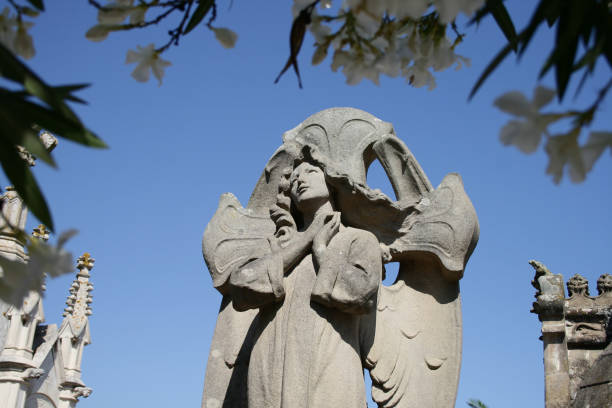 Stone angel in a cemetery. stock photo