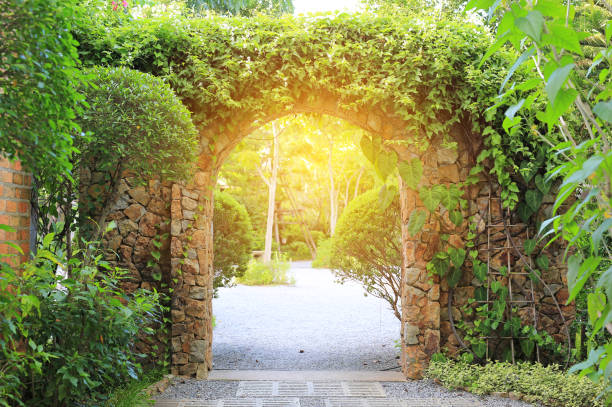 Stone arch entrance gate covered with ivy. Archway to the park with sunlight. stock photo