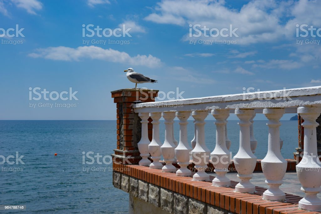 Stone balcony with white railing and Seagull. royalty-free stock photo