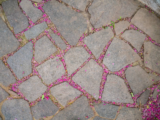Stone block garden floor with pink flower petals fallen to the floor outside. Artistic texture of stone and pink flowers stock photo