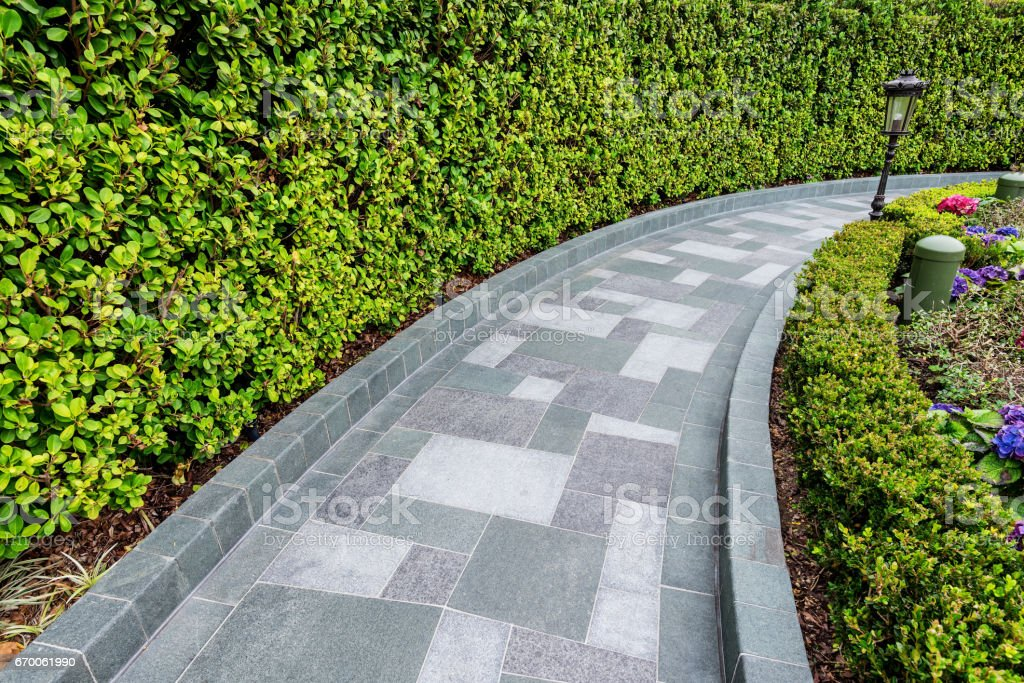 Stone brick footpath with green hedge stock photo