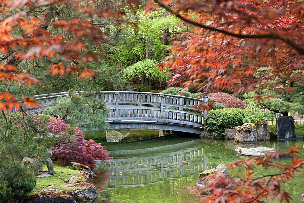 Stone bridge framed by the foliage. stock photo