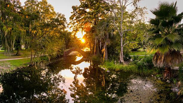 kamienny most nad bagnie, city park w nowym orleanie - bagno zdjęcia i obrazy z banku zdjęć