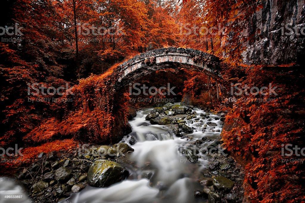 Stone Bridge, Rize, TURKEY stock photo