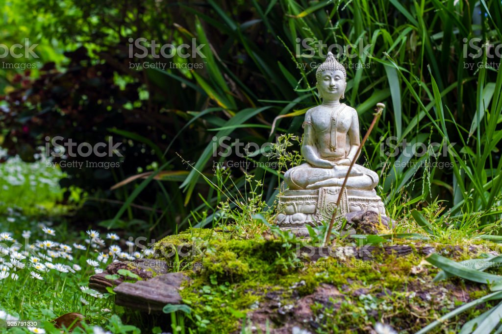 Stone Buddha In A Zen Garden Stock Photo & More Pictures of Animal ...