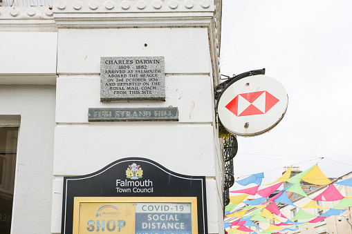 Stone carved plaque in the centre of Falmouth, Cornwall, stating that Charles Darwin arrived in Falmouth on the Beagle in 1836