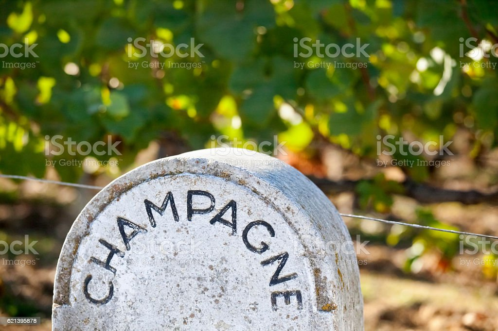 Stone Champagne Vineyard Sign stock photo