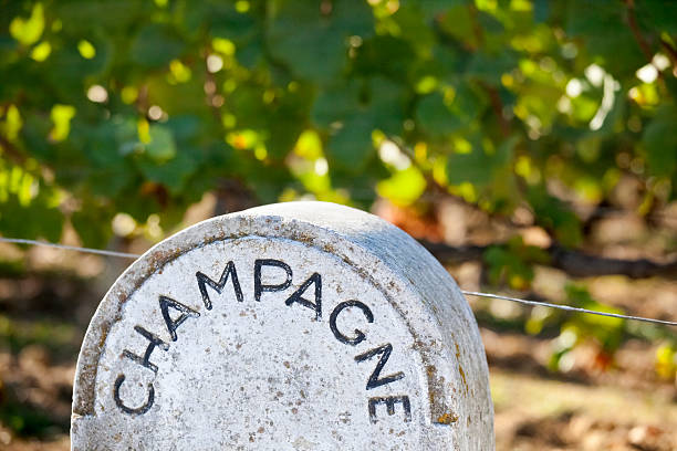 Stone Champagne Vineyard Sign – Foto